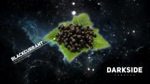 Dark Side Medium 100 г - Blackcurrant