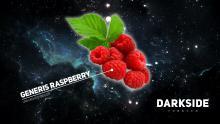 Dark Side medium 250 г - Raspberry
