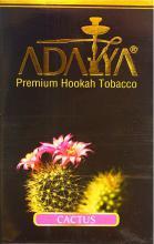 Adalya 50 г - Cactus