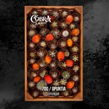 Cobra La Muerte 40г - Opuntia